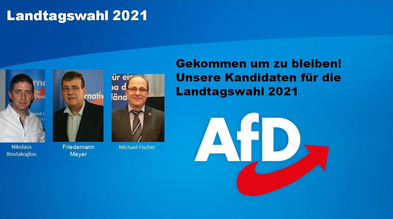 Parteien Landtagswahl Bw 2021 / Landtagswahl 2021: DIE ...
